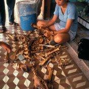 Vietnam Tiger Bone 1994