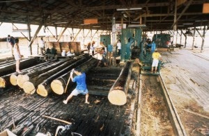Ruwi, far left, at work in the Tanjung Linga Factory, Indonesia, in 1999 (c) EIA