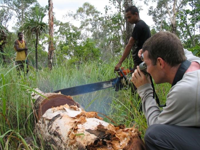 EIA investigator documenting illegal logging in Indonesia (c) EIA
