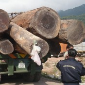 Robust borders only a part of the answer to illegal logging