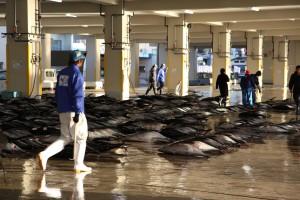 Fish market in Japan (c) EIA