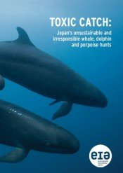Toxic Catch: Japan's unsustainable and irresponsible whale, dolphin and porpoise hunts