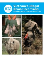 Vietnam's Illegal Rhino Horn Trade: Undermining the Effectiveness of CITES