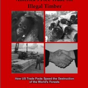 America's Free Trade for Illegal Timber