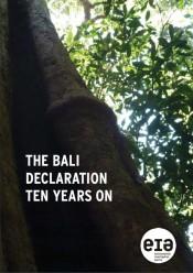 The Bali Declaration Ten Years On