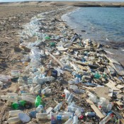 Tyranny of the minority slows international progress on addressing plastic pollution