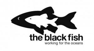 Black Fish logo
