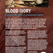 Blood Ivory: Exposing the myth of a regulated market