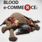 Rakuten's profits from sales of elephant ivory & whale meat