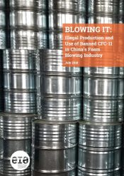 CFC-11 illegal production and use in China: Blowing It