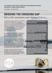 Bridging the Emissions Gap