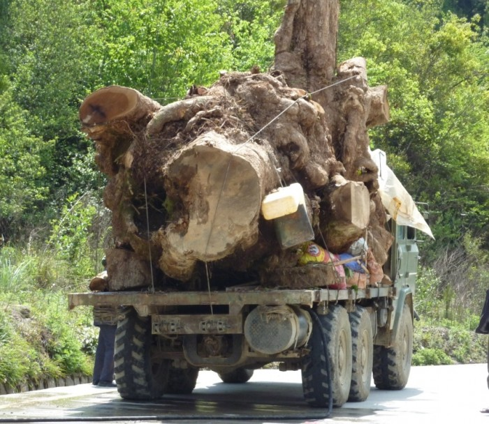 Log truck in Myanmar/Burma (c) EIA