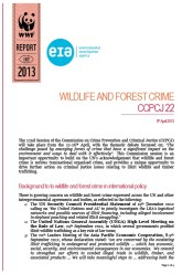 Wildlife and Forest Crime: CCPCJ 22