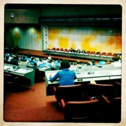 Delegates at CITES Conference