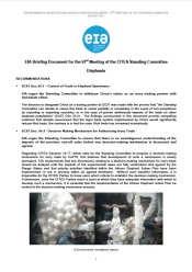 Briefing Document for the 61st Meeting of the CITES Standing Committee: Elephants