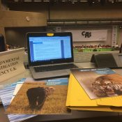 The good, the bad and the endangered – wildlife wins and losses at CITES Standing Committee
