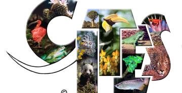CITES-logo