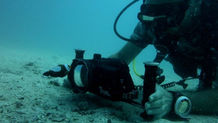 Chris Milnes filming underwater