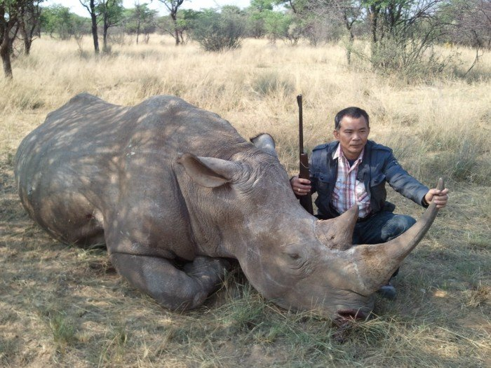 A key syndicate figure, Chumlong Lemtongthai, poses with the carcass of a rhino that he shot. The trophy was later shipped to Xaysavang Trading in Laos. Chumlong is currently serving a 30 year prison sentence in South Africa.