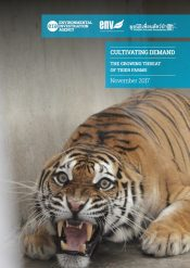 Cultivating Demand – The Growing Threat of Tiger Farms