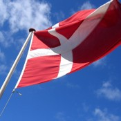Whaling report calls Danish EU presidency into question