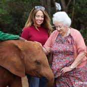 Elephant rescue pioneer Dame Daphne Sheldrick – we have lost an extraordinary individual