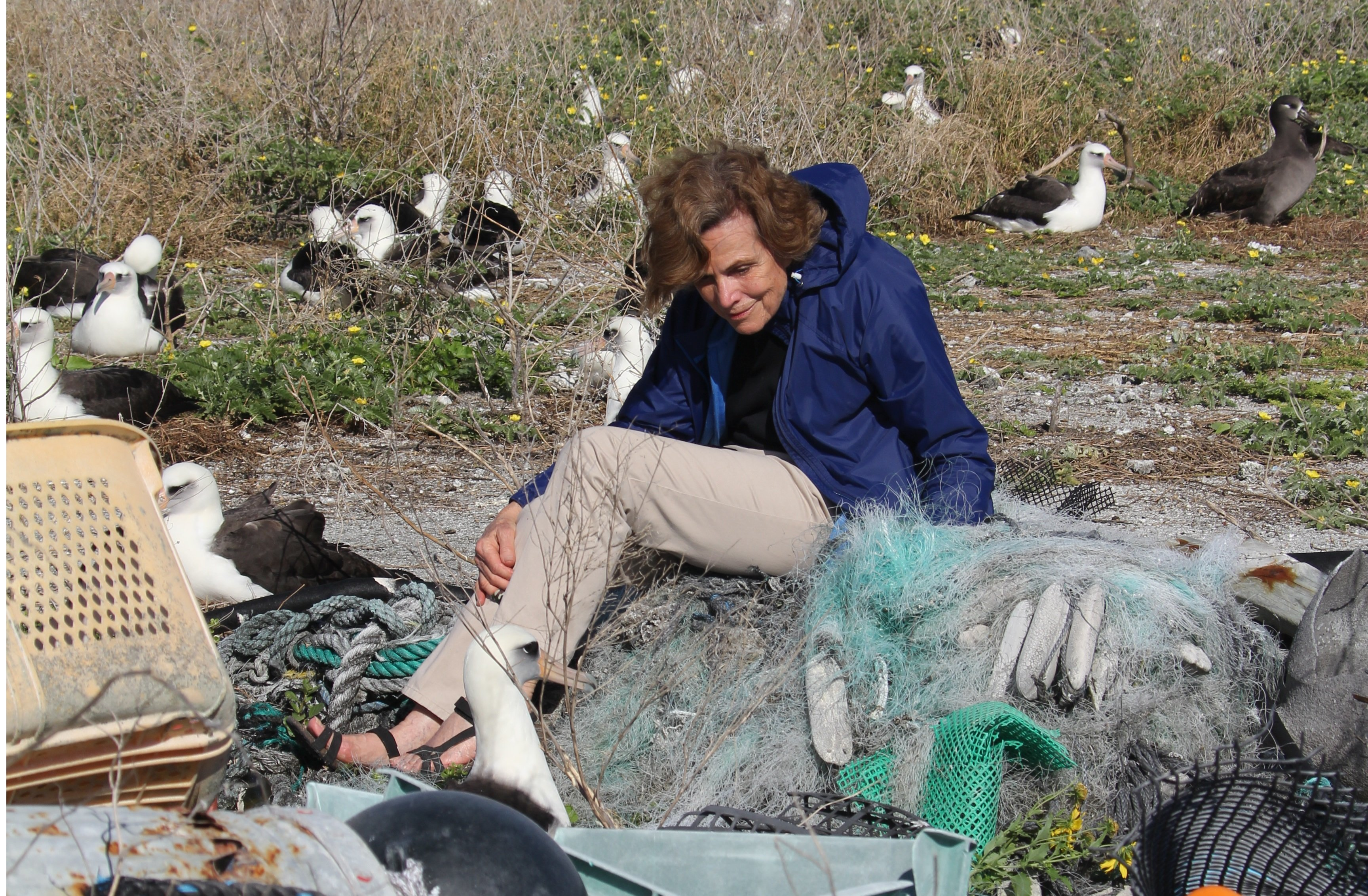 Dr Sylvia Earle (c) NOAA Office of National Marine Sanctuaries