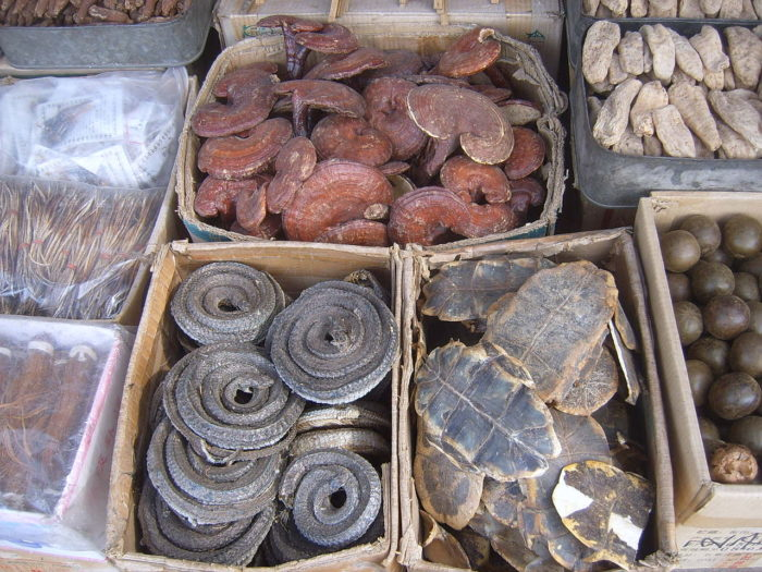 Dried plants and animals parts are used in traditional Chinese medicines, by Vberger