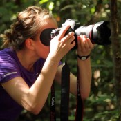 Vacancy: Visual Communications Coordinator