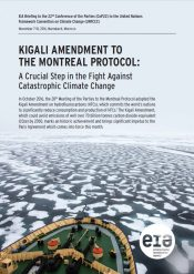 Kigali Amendment to the Montreal Protocol