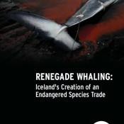 Renegade Whaling