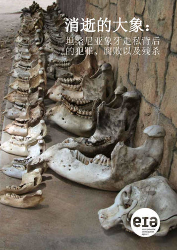 Chinese language cover for the Vanishing Point report