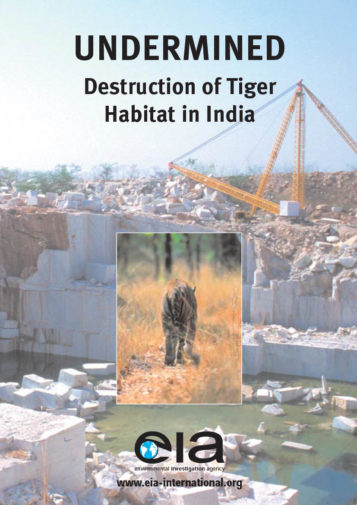 Front cover of our report entitled Undermined: Destruction of Tiger Habitat in India