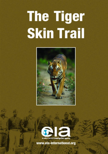 Front cover of our report entitled The Tiger Skin Trail