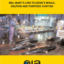 Front cover of our report entitled Whale-Mart: Wal-Mart's link to Japan's whale, dolphin and porpoise hunting