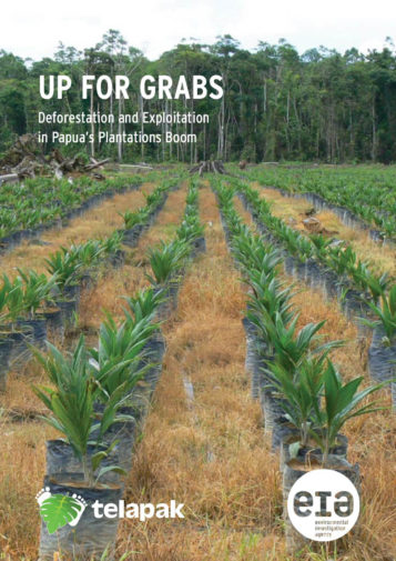 Front cover of our report entitled Up for Grabs: Deforestation and Exploitation in Papua's Plantations Boom