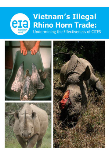 Front cover of our report entitled Rhino Horn Trade: Undermining the effectiveness of CITES