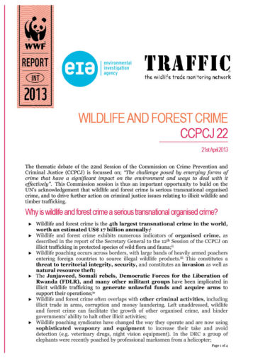 Front cover of our briefing document for CCPCJ22