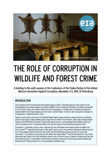 Front cover of our briefing entitled The Role of Corruption in Wildlife and Forest Crime