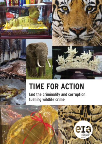 Front cover of our report entitled Time for Action: End the criminality and corruption fuelling wildlife crime