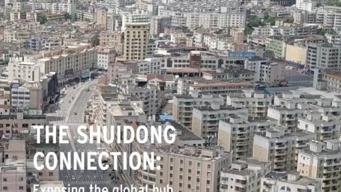 Front cover of our report entitled The Shuidong Connection: Exposing the global hub of the illegal ivory trade