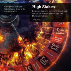 Front cover of the High Stakes 2019 EIA Report