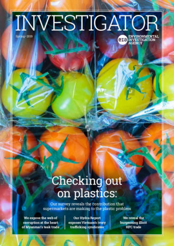 Front cover of Investigator Magazine depicting packaged tomatoes for the 'Checking out on plastics' survey story