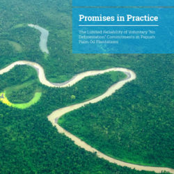 Front cover of our report entitled Promises in Practice: The Limited Reliability of Voluntary