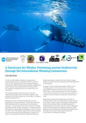 A Sanctuary for Whales: Protecting marine biodiversity through the International Whaling Commission
