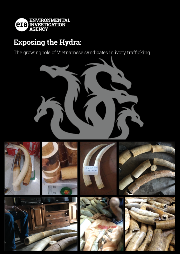 Exposing the Hydra report cover (c) EIAimage