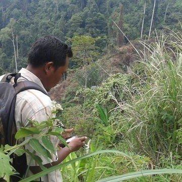 Field Investigator, Aceh