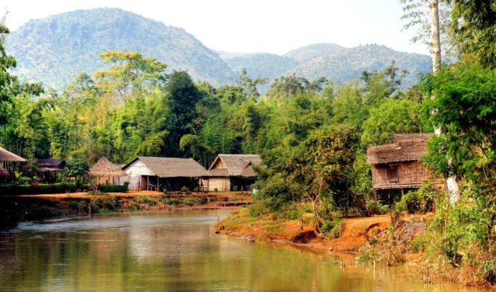 A forest village
