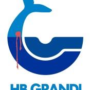 Keep pressure on HB Grandi over links to Icelandic whaling