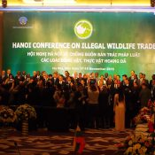 Hanoi Statement: Political talk worth little without action